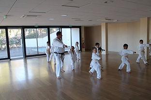 Karate Fuiani salle du cosec
