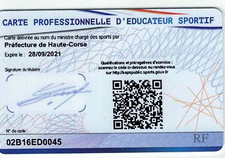 educateur sportif professionnel de karate