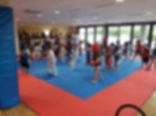 Karatebabyshotokandecorse