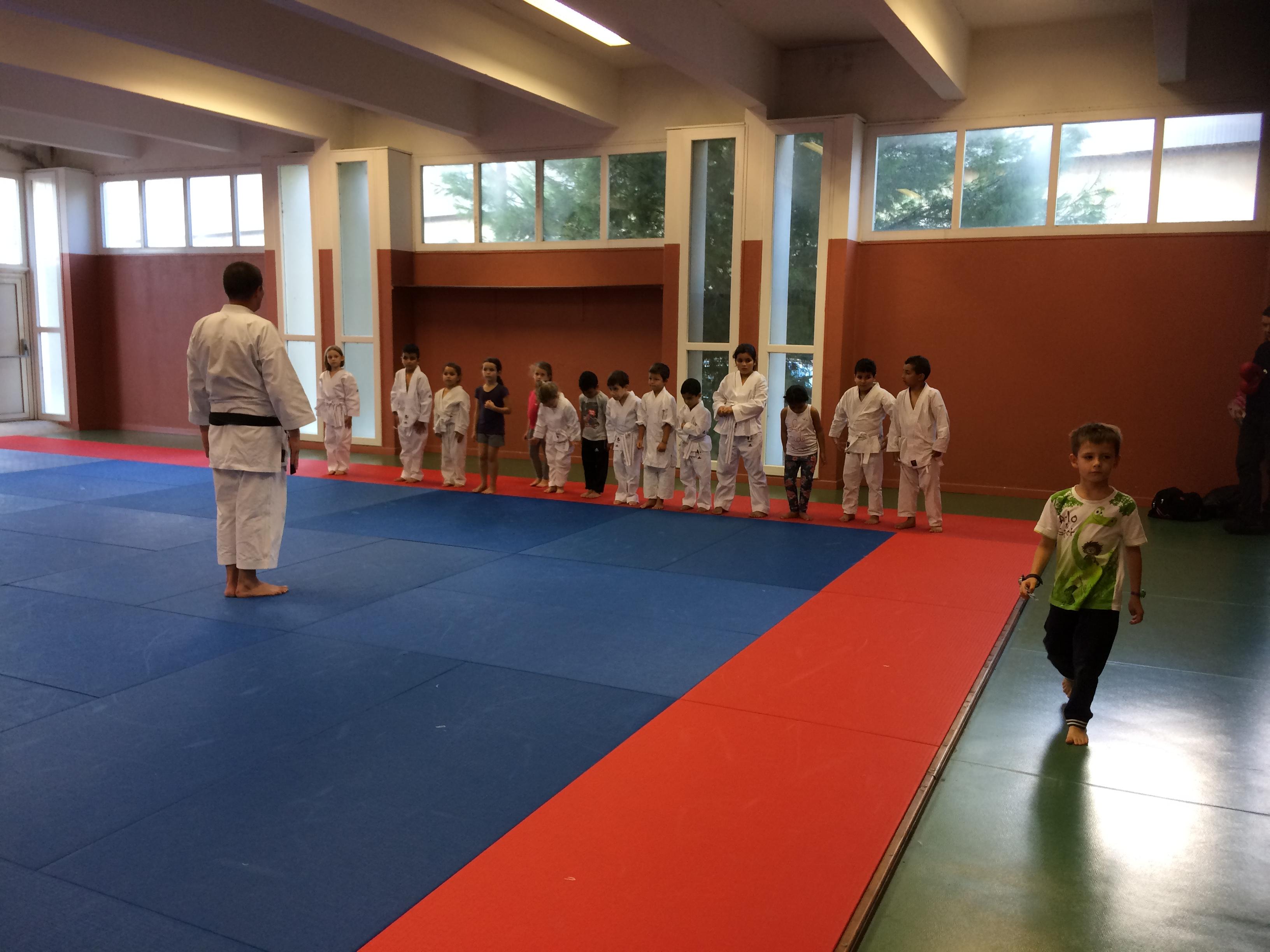 salut karate