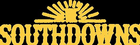 New SD Logo - Orange Text.png