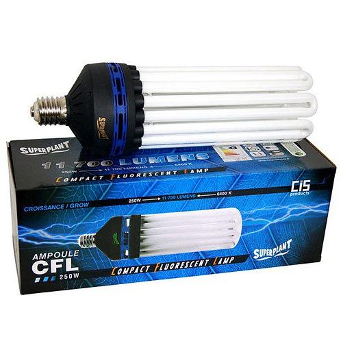 CFL 250W - 6400°K