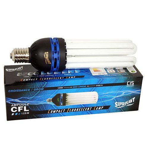 CFL 125W - 6400°K