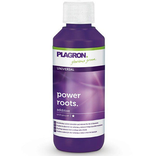 POWER ROOT 100ML