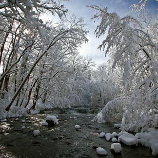 Winter Wonder!