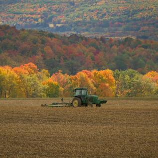 Farming in Springwater, NY