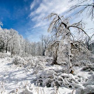 Whoaaa, Winter!