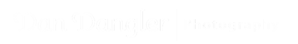 dan-dangler-logo_white.png