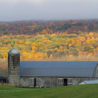 Farm in Conesus, NY