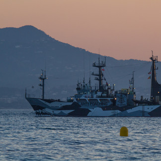 The Sam Simon in Cannes, France