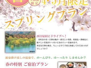 4・5月限定!お得な宿泊パックご紹介!