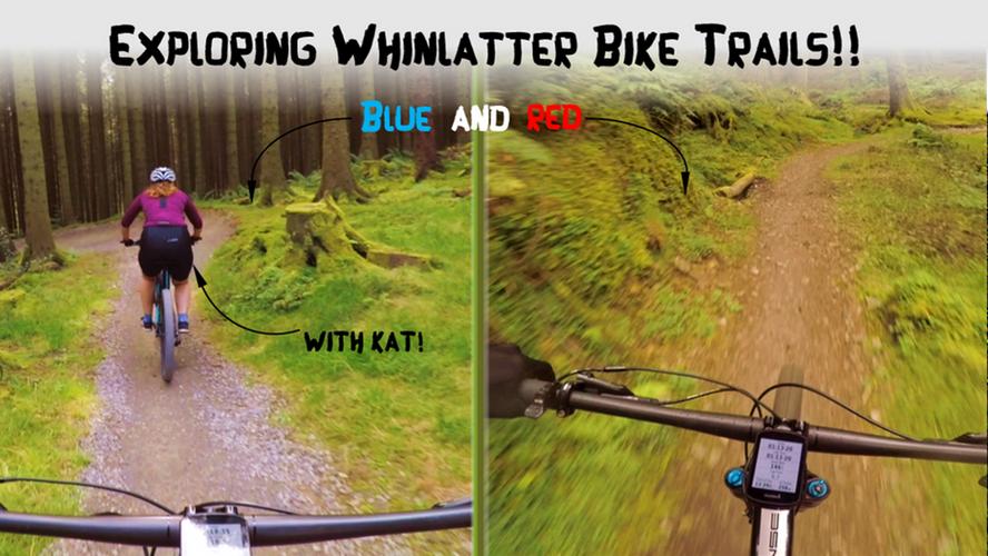 Exploring Whinlatter Bike Trails