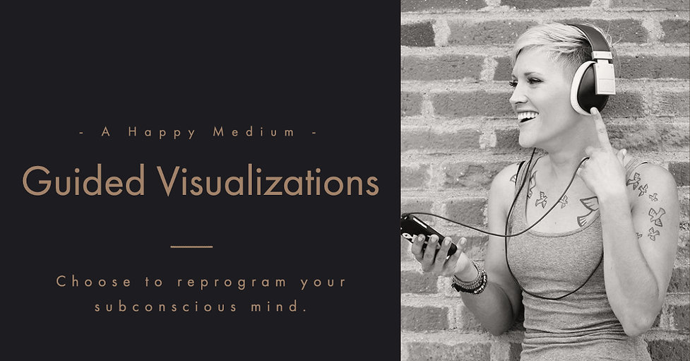 Guided Visualizations.jpg