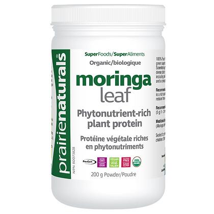 Super Food- Moringa Leaf