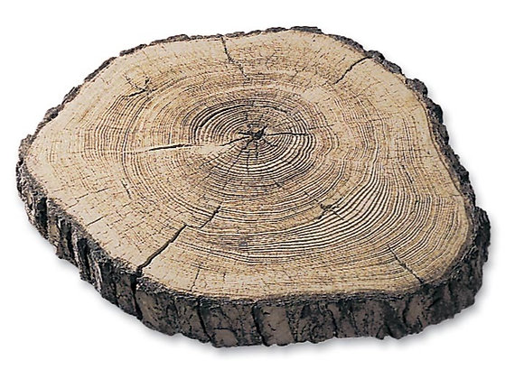 "14"" Maple Log Round Stepping Stones"