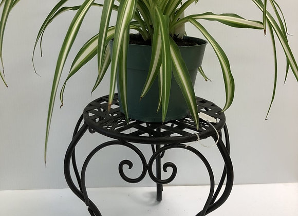 Small Black Flower Stand