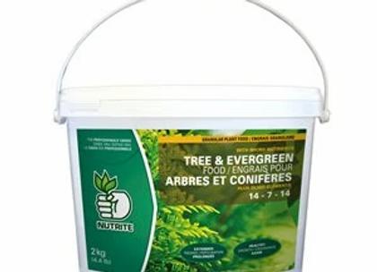 Nutrite Tree and Evergreen Food