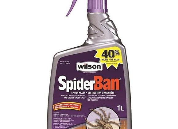 Spider Ban