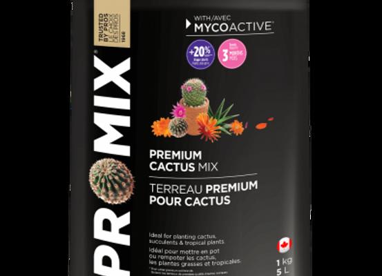 Cactus Soil Mix