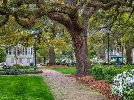Guide to Savannah: Eat