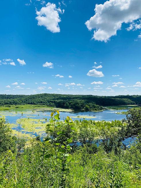 Nelson Farm View .jpg
