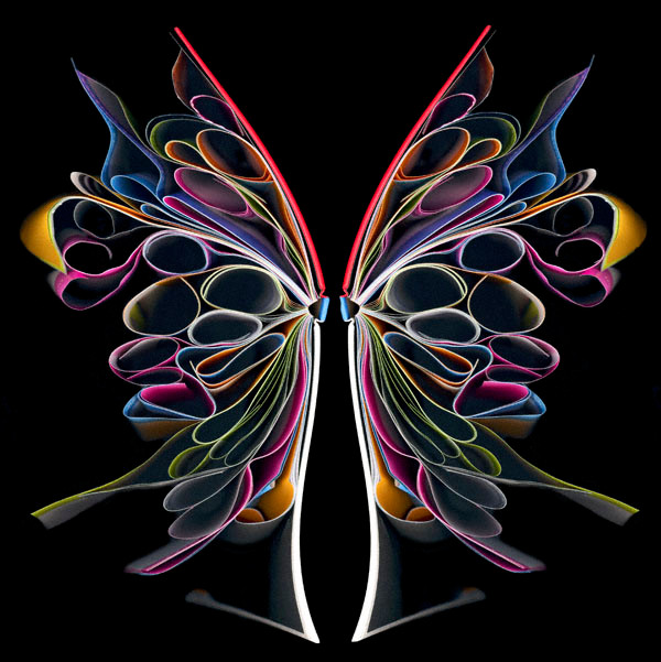 Cara Barer, Butterfly 2