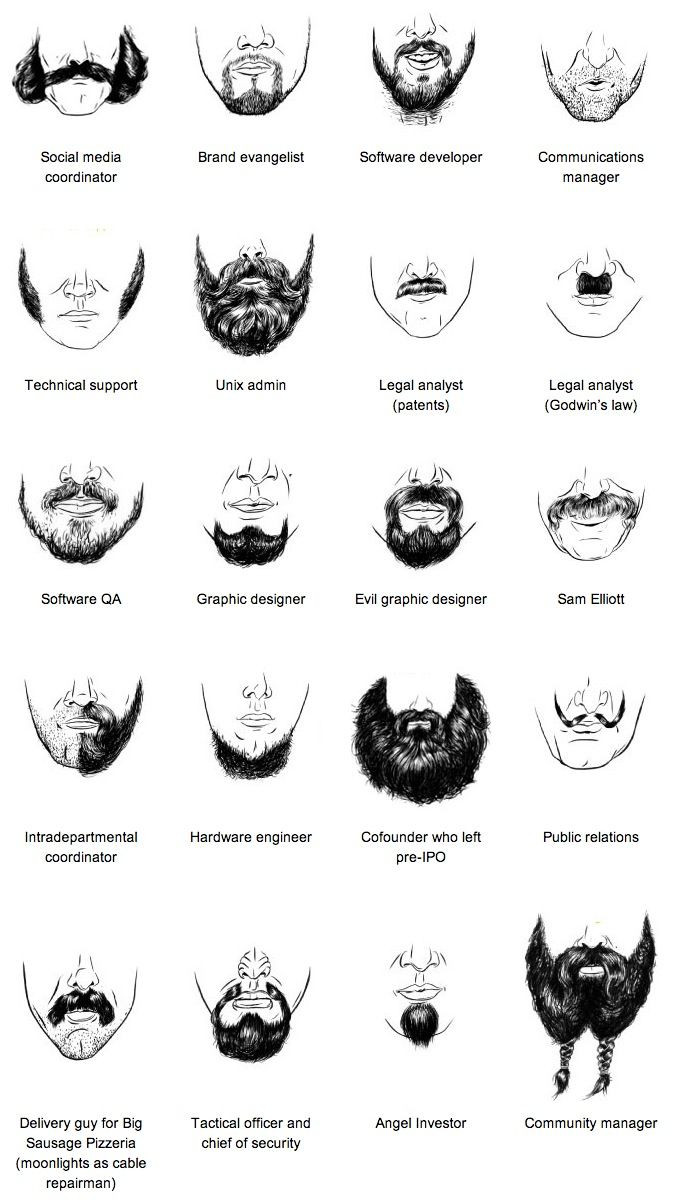 Beards of Silicon Valley: A Field Guide to Tech Facial Hair