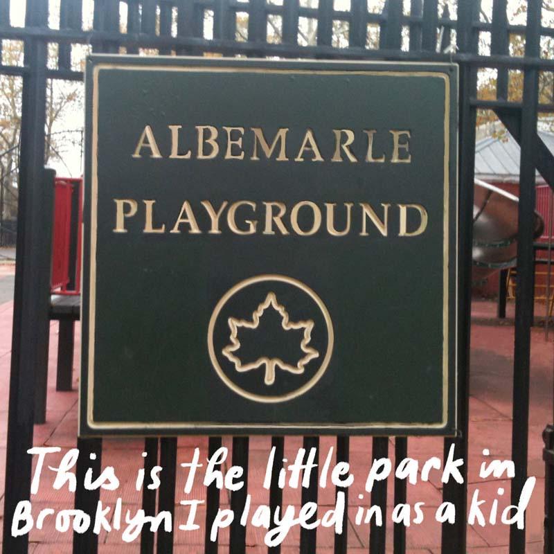 Albemarle Playground in Brooklyn