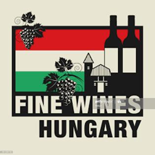 Ungarische Weinverkostung