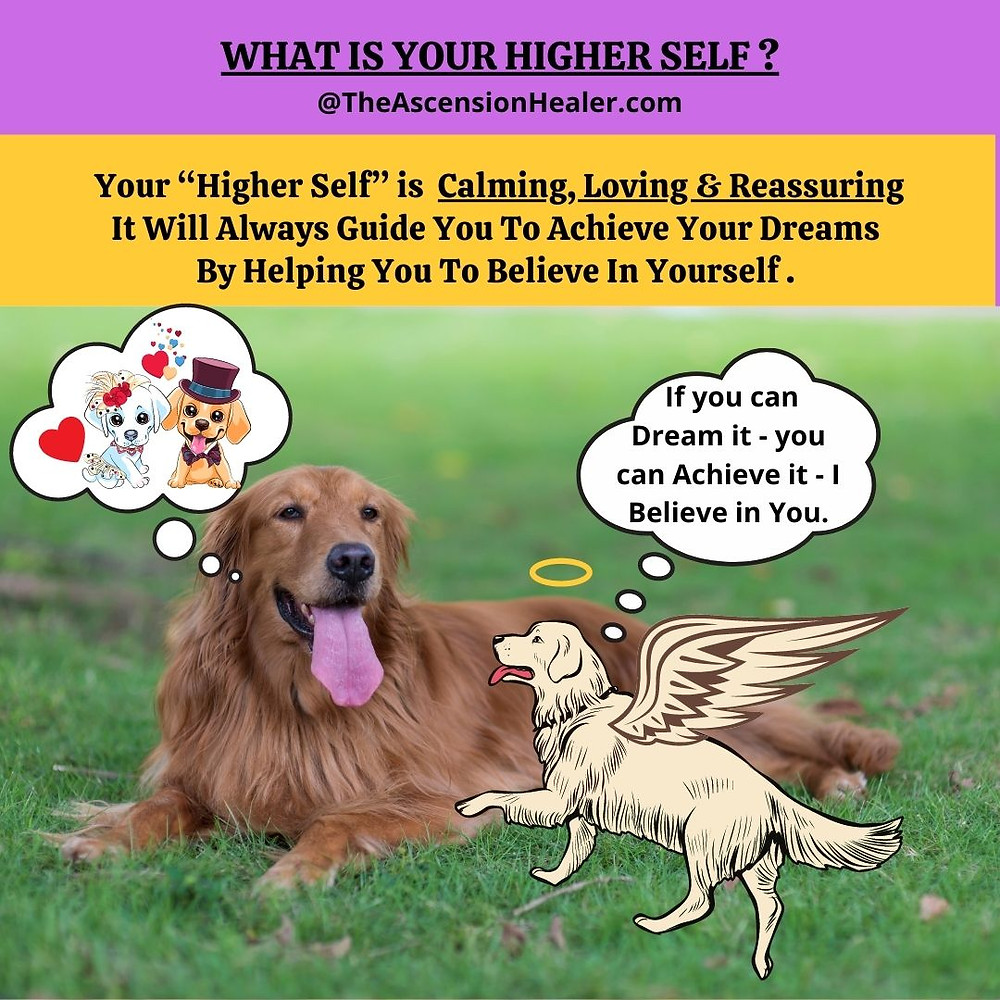 Higher Self Guidance. Higher Self Helping you to believe in yourself and achieve your dreams.