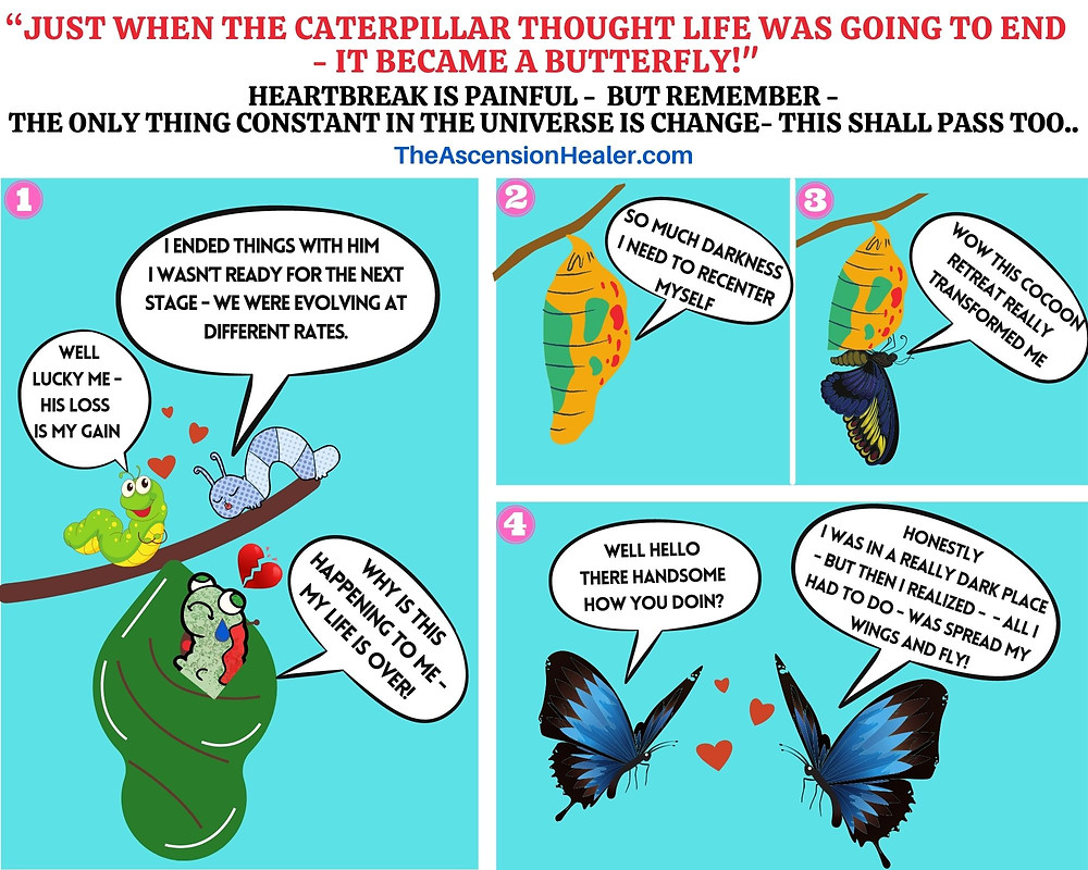 just when the caterpillar thought life was over it became a butterfly - heartbreak recovery guide
