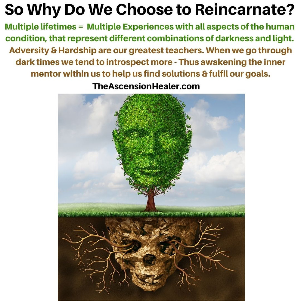Why do we choose to reincarnate
