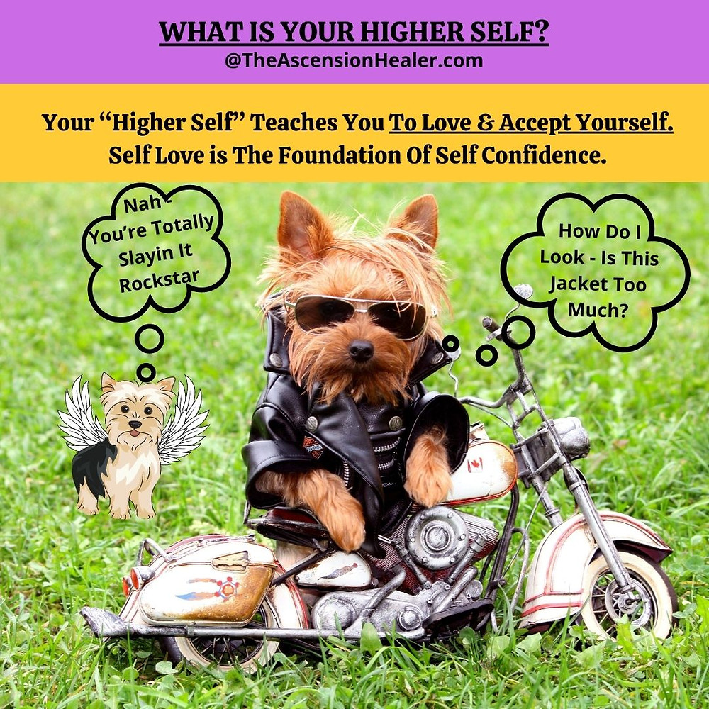 Higher Self teaches self love and self acceptance