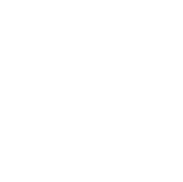 surebridge_white.png