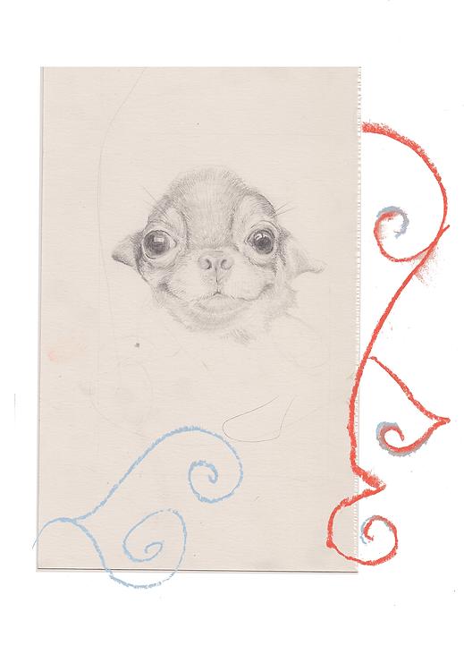 dog drawing.png