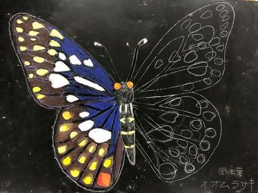 蝶デザインのモザイク