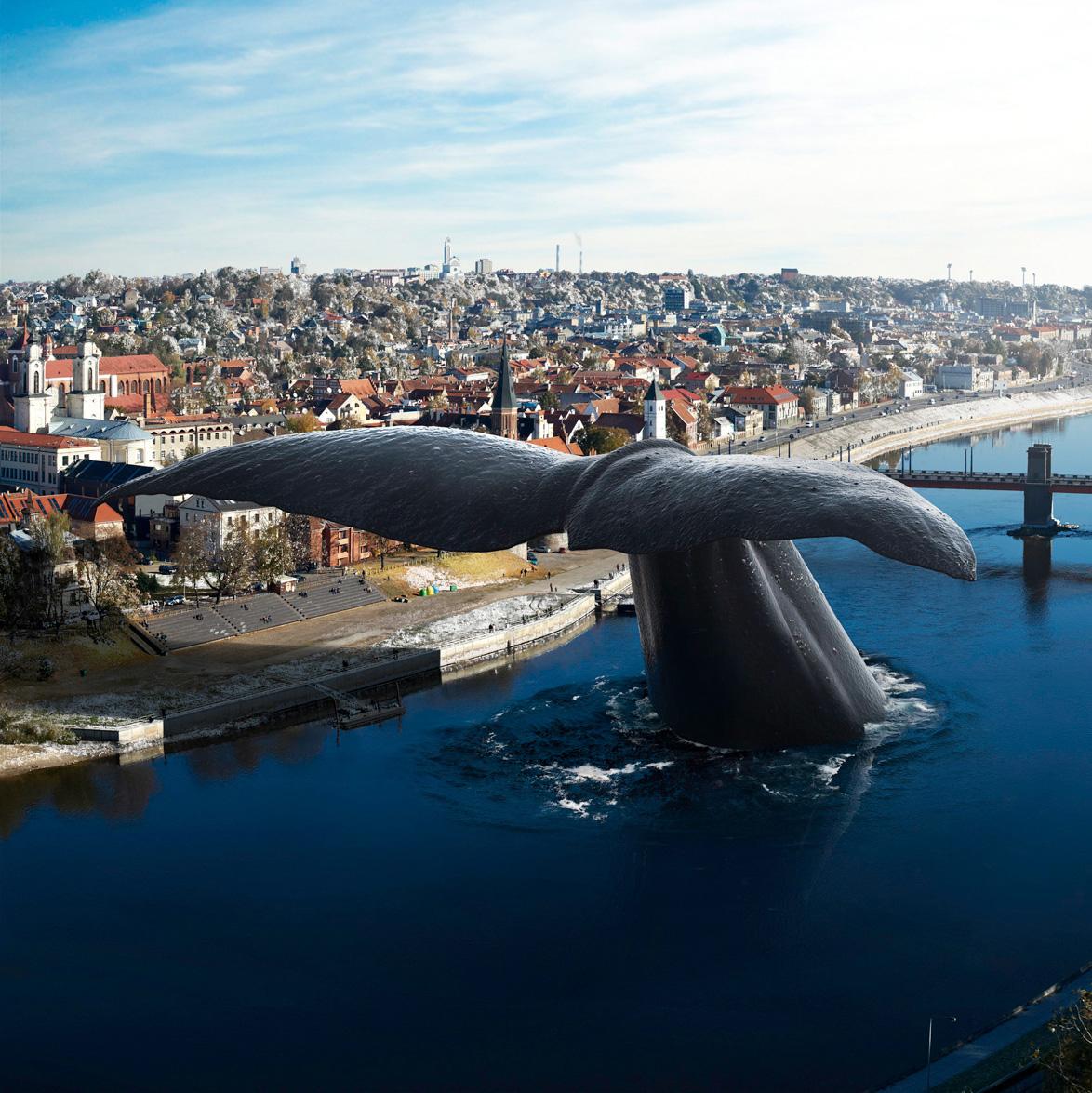 Banginio atvykimas į Kauną