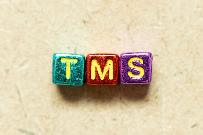 Metallic color alphabet letter block in word TMS (Abbreviation of Transportation managemen