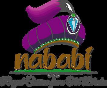 Nababi Main Logo Gen 5 b  2020.png