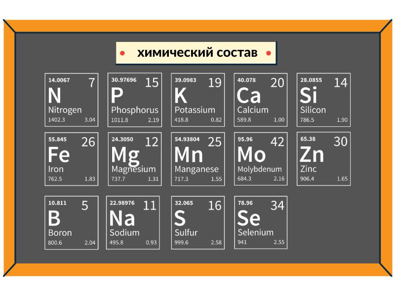 Химический состав Агрион