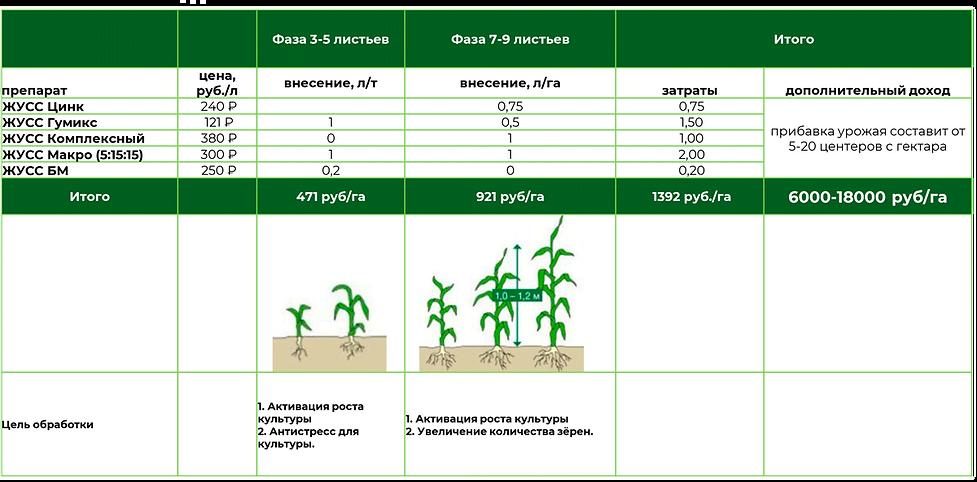 программа питания кукуруза