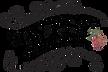 The Gypsy Caravan Co Logo3.png