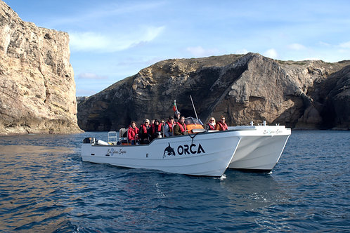 "Boat Charter ""ORCA"""