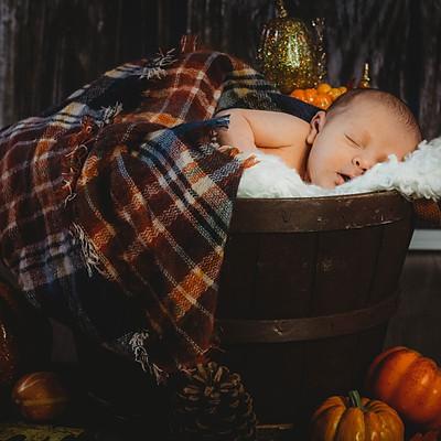 Korra Newborn