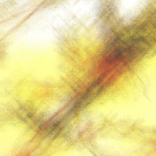 chlorophyl abstraction 6.jpg