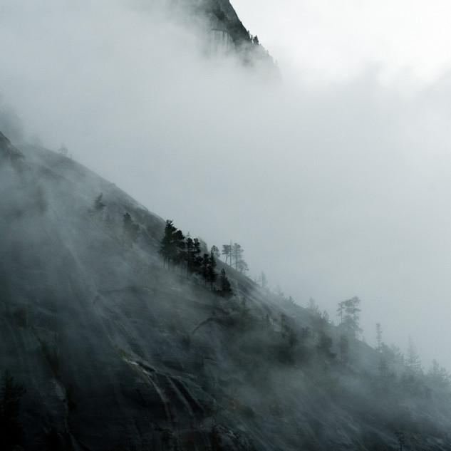 c_hillside.jpg