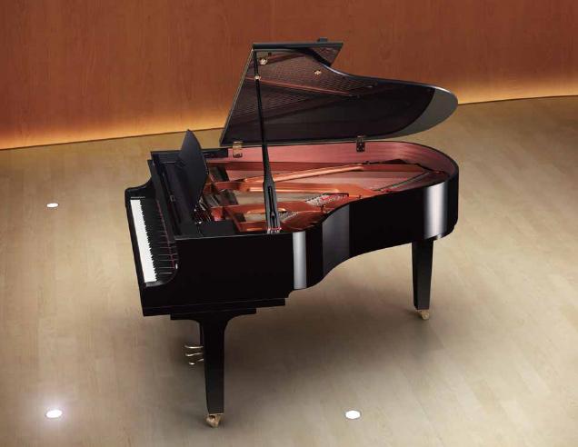 Yamaha C2X View 2