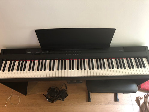 Yamaha P105 - 3 Years Old