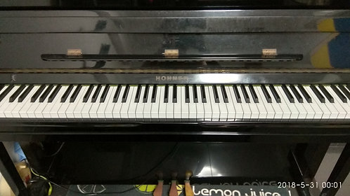 Hohner HP120 - 20 Years Old