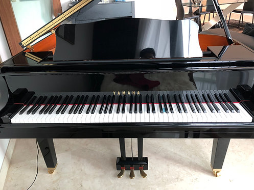 Yamaha GB1K - 1.8 Years Old